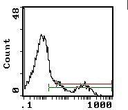 HLA-DR Antibody (MA5-18021)