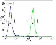 MAF1 Antibody (PA5-23712)