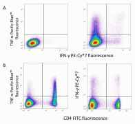 CD4 Antibody (MCD0401)