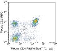 CD4 Antibody (MCD0428)
