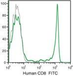 CD8 Antibody (MHCD0801)