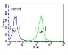 MTMR15 Antibody (PA5-25171)