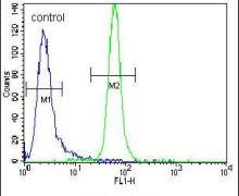 MUSK Antibody (PA5-14705)