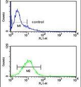 MYO1A Antibody (PA5-14229)