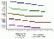GlobalFiler® Express PCR Amplification Kit multiplex construct