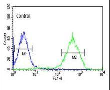 NDUFA10 Antibody (PA5-26771)