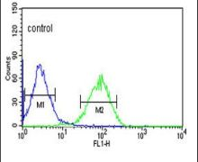 NR5A1 Antibody (PA5-25030)