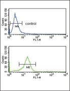 OPRM1 Antibody (PA5-26138)