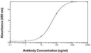 LSM4 Antibody (PA1-28314)