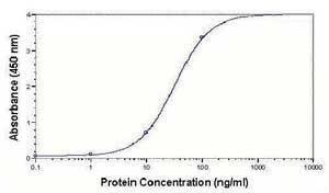 LDLR Antibody (PA1-31260)