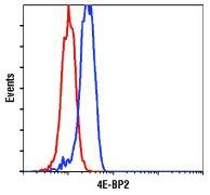 4E-BP2 Antibody (PA5-17527)