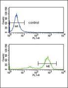 ETV6 Antibody (PA5-35371)