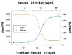 IL-15 Receptor Antibody (PA5-46991)