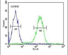 PAN3 Antibody (PA5-24880)