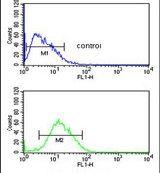 PARP16 Antibody (PA5-25891)