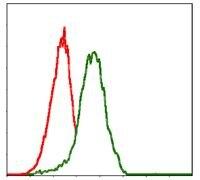 PDX1 Antibody (MA5-17148)