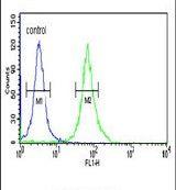 PKM2 Antibody (PA5-25962)
