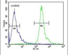 PNPLA8 Antibody (PA5-24642)