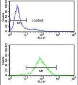 PPM1H Antibody (PA5-26102)