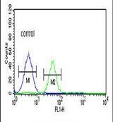 PSMAL Antibody (PA5-24990)