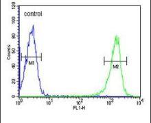 PSME1 Antibody (PA5-25179)