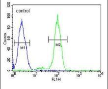 PTPLB Antibody (PA5-24897)