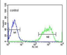 PXMP2 Antibody (PA5-26871)