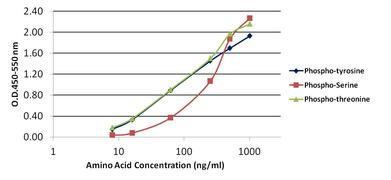 Phosphoserine/threonine/tyrosine Antibody (61-8300)