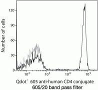 CD4 Antibody (Q10008)