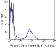CD11b Antibody (RM2828)