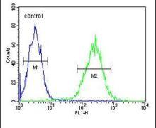 RPRD1B Antibody (PA5-26915)