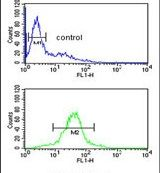 RSPO4 Antibody (PA5-25615)