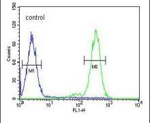 RTP4 Antibody (PA5-24039)