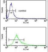 S100A10 Antibody (PA5-26100)