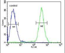 SAMSN1 Antibody (PA5-25771)