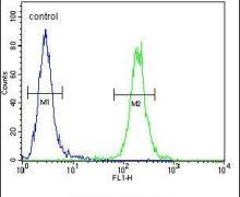 SCARF2 Antibody (PA5-24043)