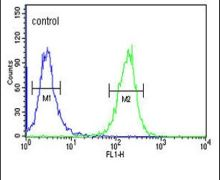 SEZ6L2 Antibody (PA5-24862)