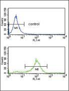 SFRP1 Antibody (PA5-26048)