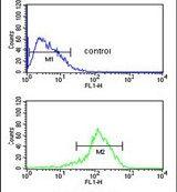 SFT2D3 Antibody (PA5-25192)