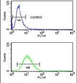 SLC25A17 Antibody (PA5-26180)