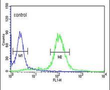 SNURF Antibody (PA5-12422)