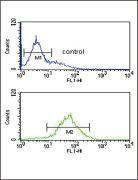 SRD5A3 Antibody (PA5-25200)