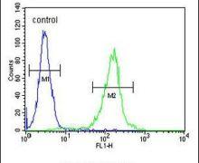 STEAP2 Antibody (PA5-25495)