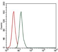 Splunc2 Antibody (MA5-17126)