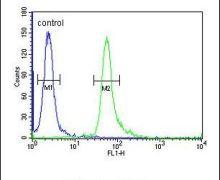 TAGAP Antibody (PA5-24442)