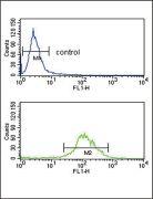 TAT Antibody (PA5-26541)
