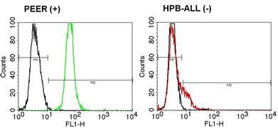 TCR V beta 5b Antibody (TCR1645)