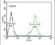 TEX13B Antibody (PA5-24379)