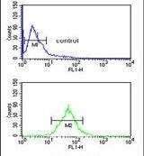 TFPT Antibody (PA5-26312)