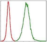 TNNI2 Antibody (MA5-17189)